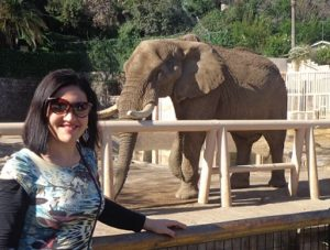 Zoo Metropolitano